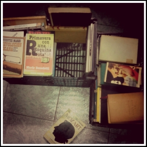 A poner los libros nuevos en mis libreros con ayuda de mi Weirdperson.